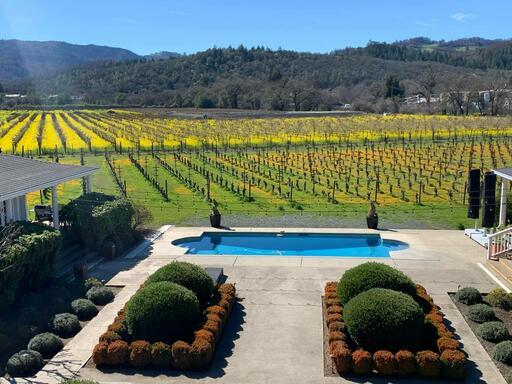 Saint Helena Winery Image