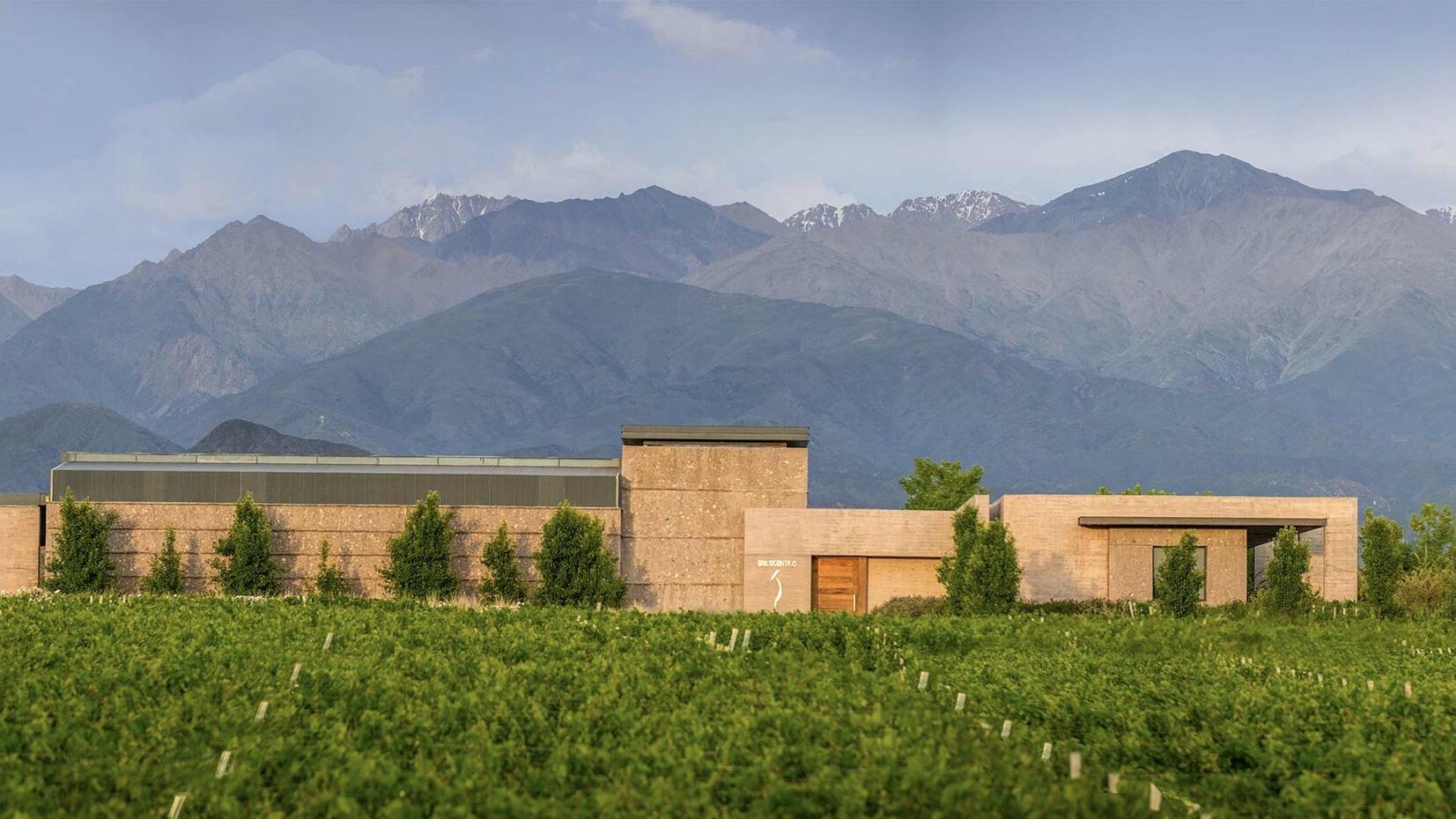 SoloContigo Wine Cover Image