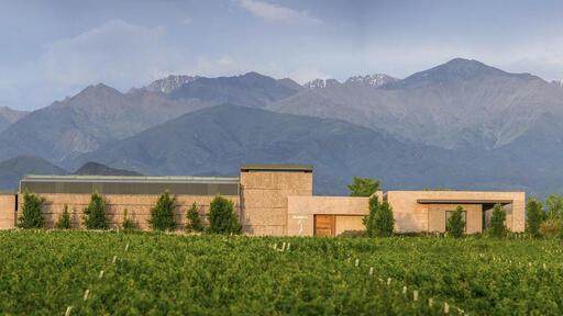 SoloContigo Wine Image