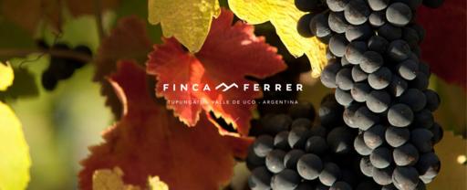 Finca Ferrer Image