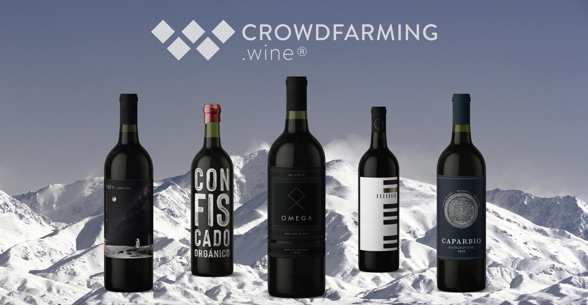 Crowdfarming.wine Cover Image