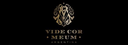 Vide Cor Meum Image