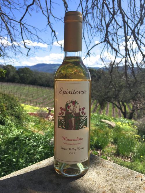 """Spiriterra Vineyards Muscadine """"deliciously sweet"""" Bottle Preview"""
