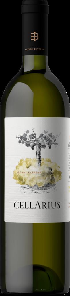 Bodega Isasmendi Cellarius Torrontés Bottle Preview