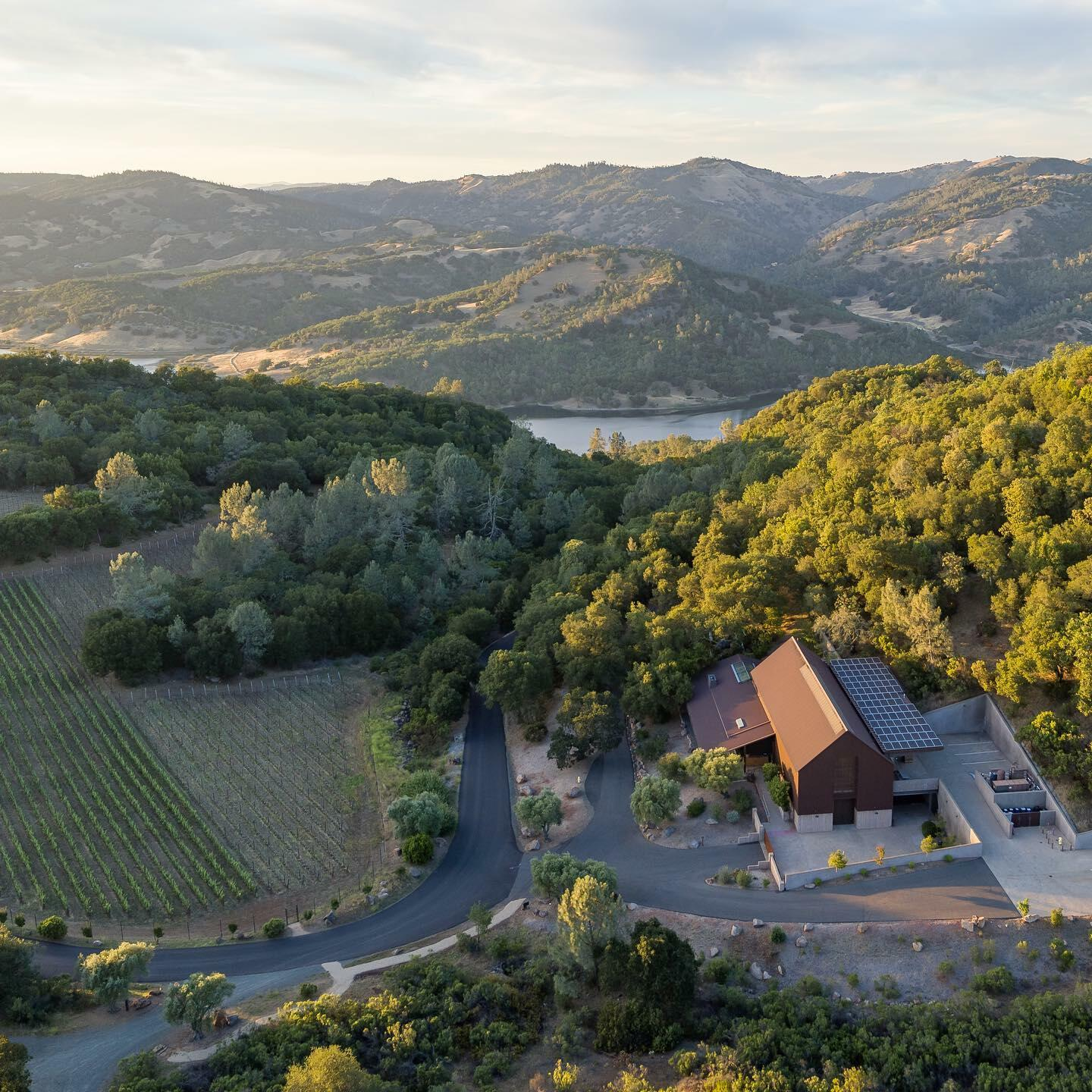 BRAND Napa Valley Cover Image