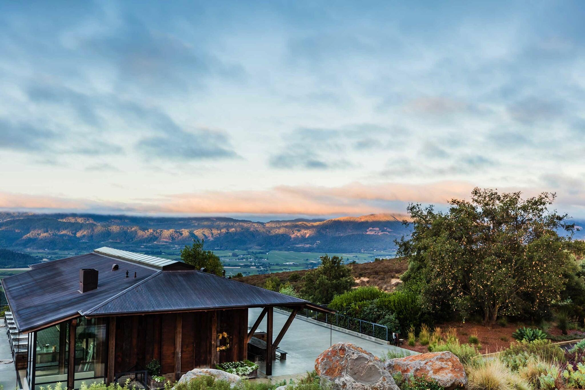 OVID Napa Valley Cover Image