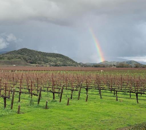 Vine Hill Ranch Image