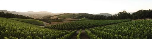 Progeny Winery Image