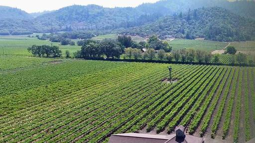 Paradigm Winery Image