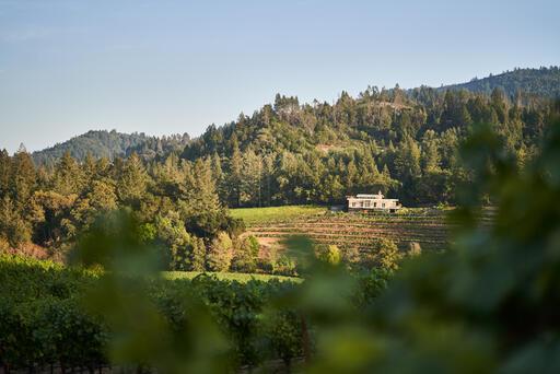Diamond Creek Vineyards Image