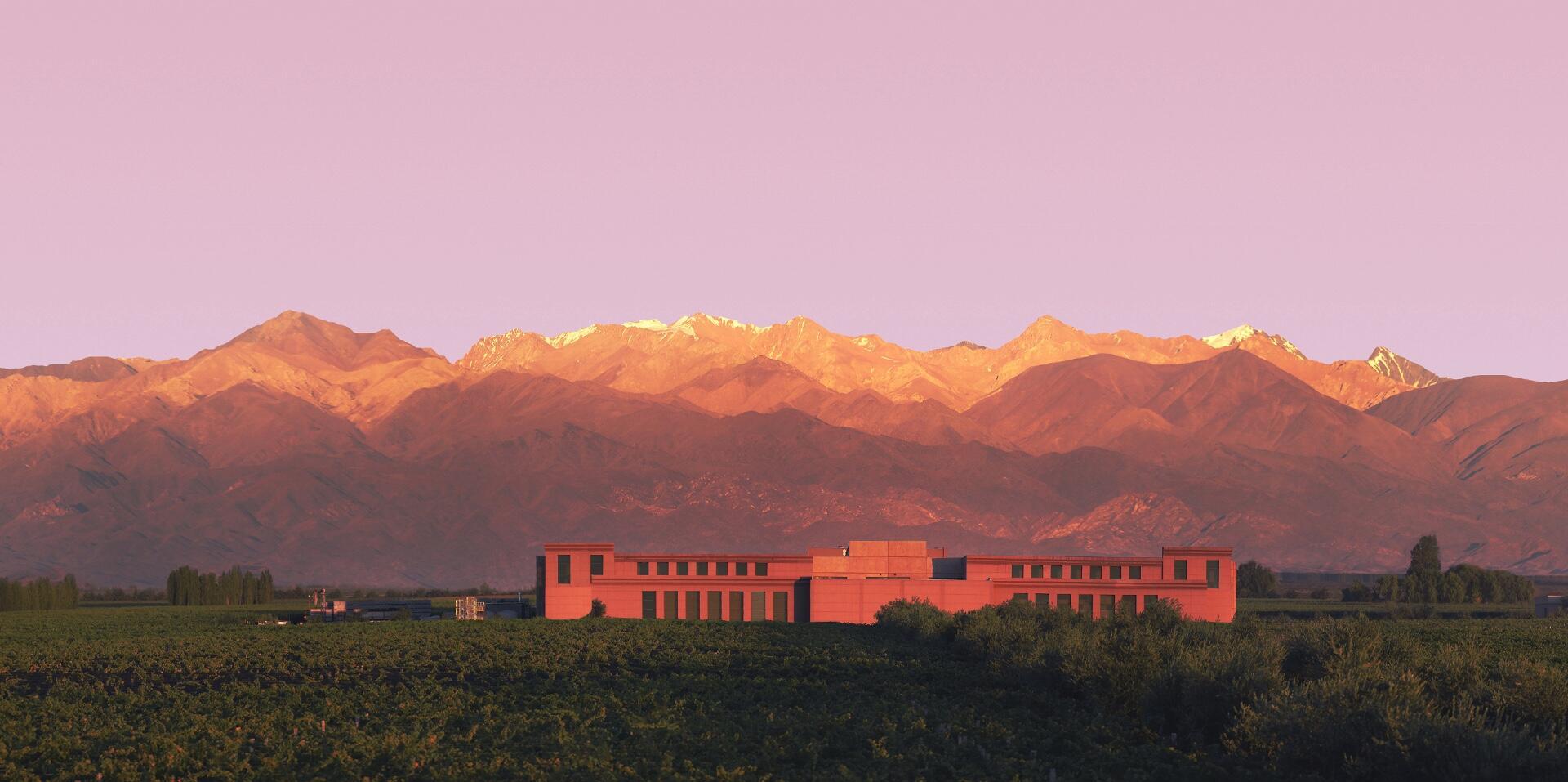 Rutini Wines Cover Image