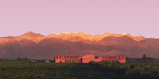 Rutini Wines Image