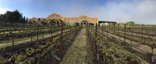 Black Stallion Estate Winery Image