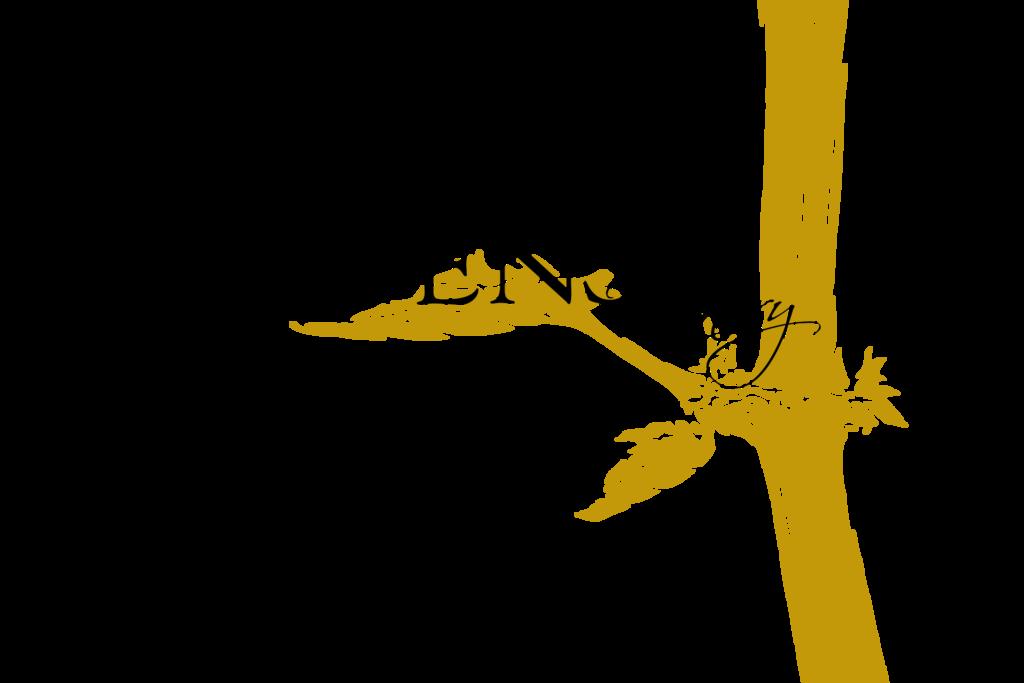 Havens Winery Logo