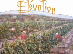 Vignoble La Romance du Vin Elévation