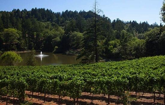 Sherwin Family Vineyards Cover Image