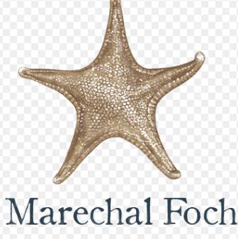 Sea Star Estate Farms & Vineyards Marechal Foch