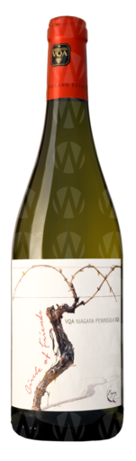 Vineland Estates Circle of Friends: Jessica's Chenin Blanc