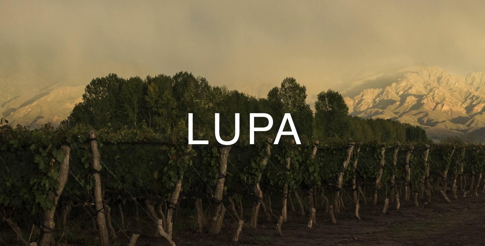 Lupa Wines Cover Image