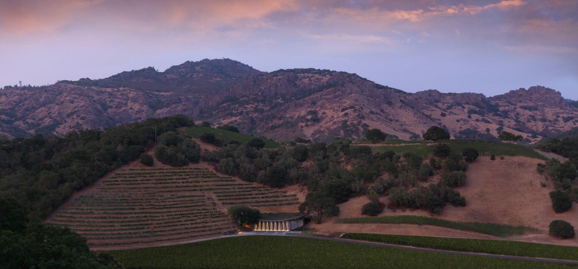 Odette Estate Winery Cover Image