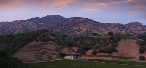 Odette Estate Winery Image
