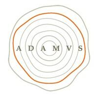 ADAMVS Logo