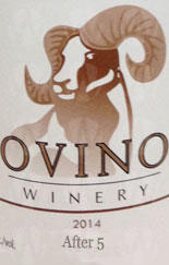Ovino Winery After 5