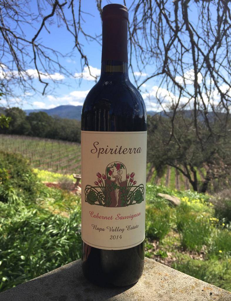 Spiriterra Vineyards Cabernet Sauvignon Bottle Preview