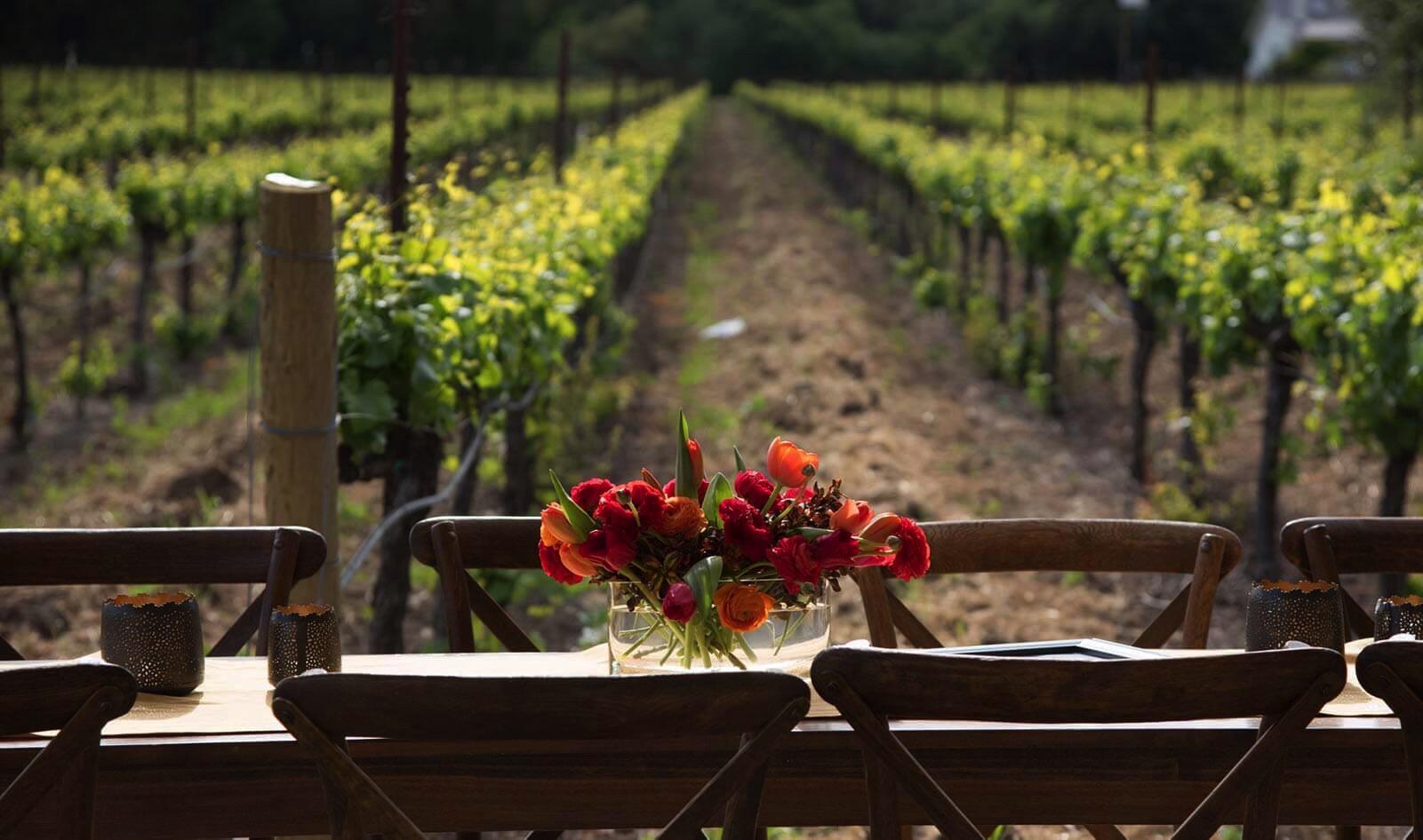 Luna Vineyards Cover Image