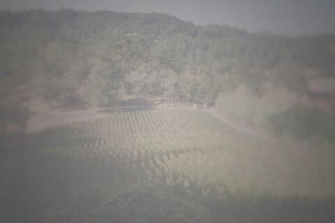 Perliss Estate Image