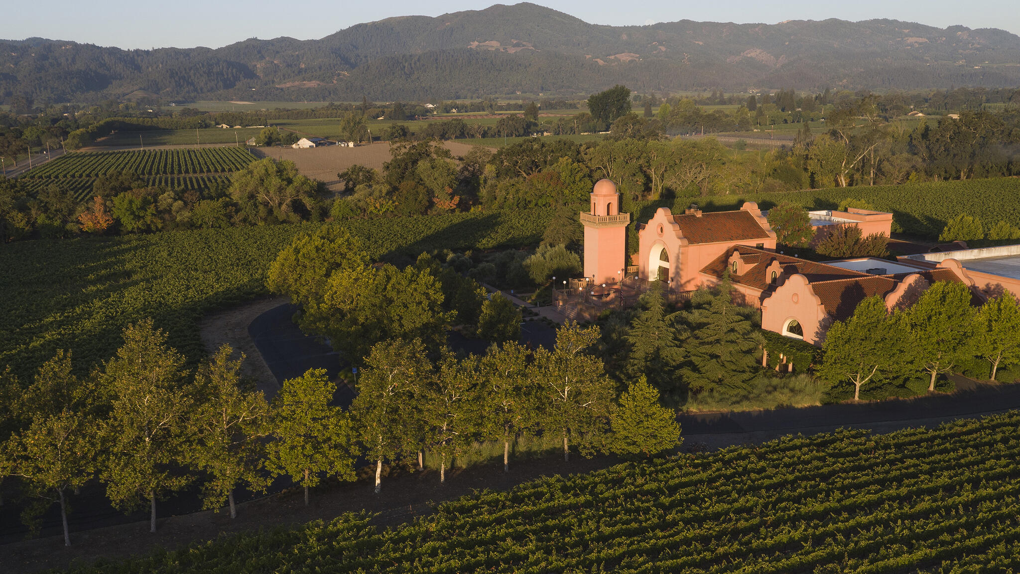 Groth Vineyards & Winery Cover Image