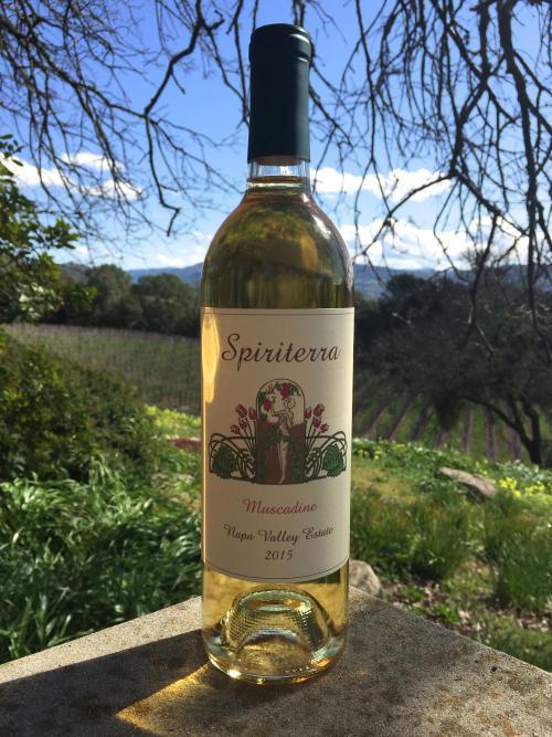 Spiriterra Vineyards Muscadine Bottle Preview