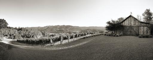 Fe Wines Image