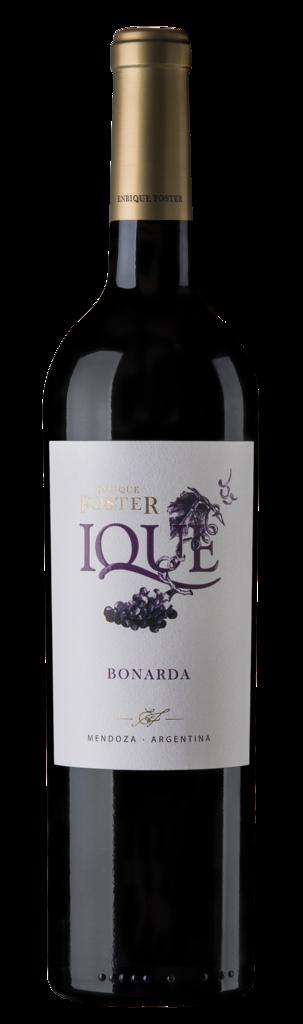 Enrique Foster Ique Bonarda Bottle