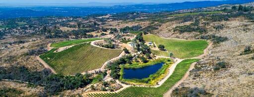 Hesperian Wines Image