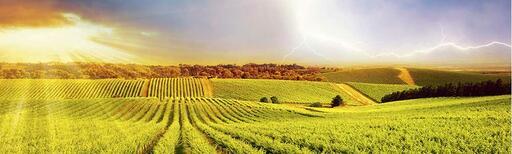 Coup De Foudre Winery Image