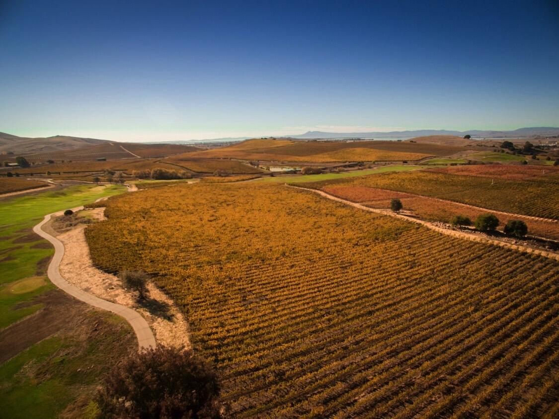 Levendi Winery Cover Image