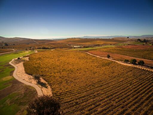 Levendi Winery Image