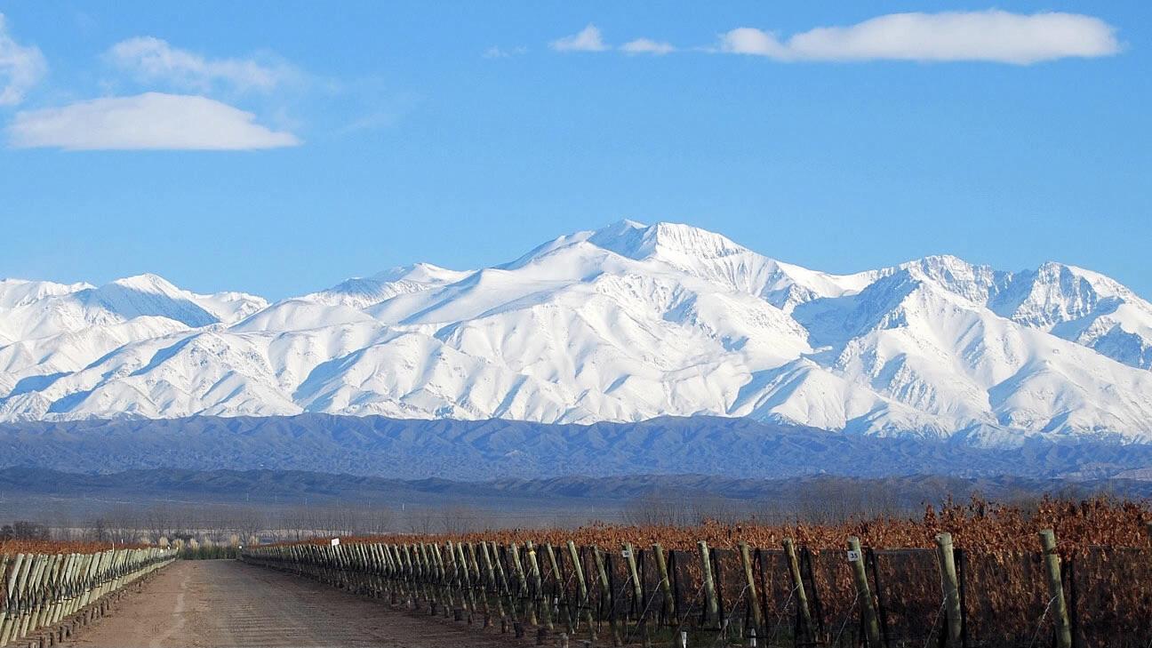 Bodega Laderas de Los Andes Cover Image