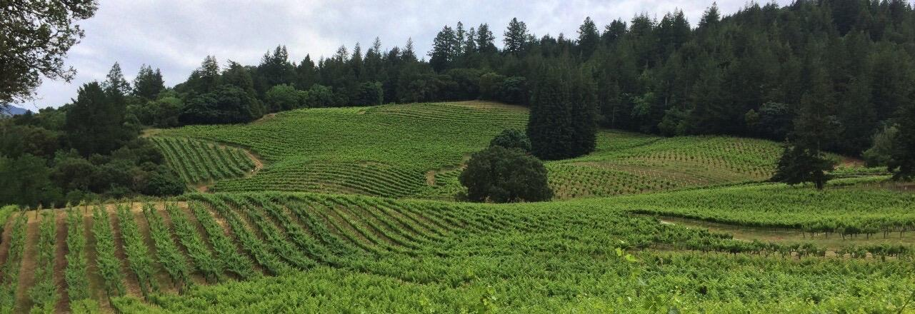 Storybook Mountain Vineyards Cover Image