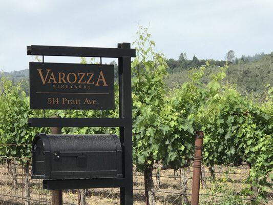 Varozza Vineyards Cover Image