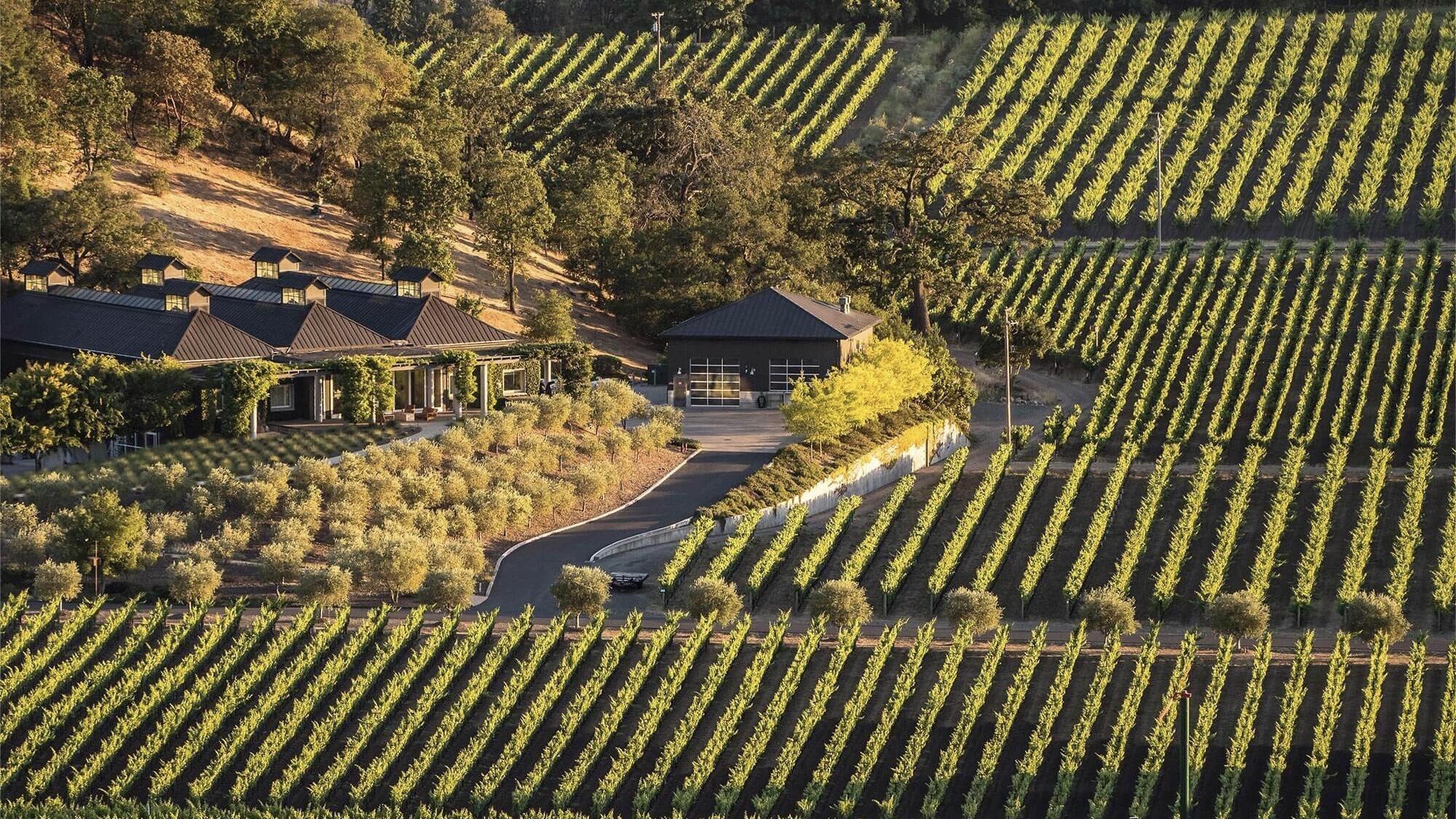 Cliff Lede Vineyards Cover Image