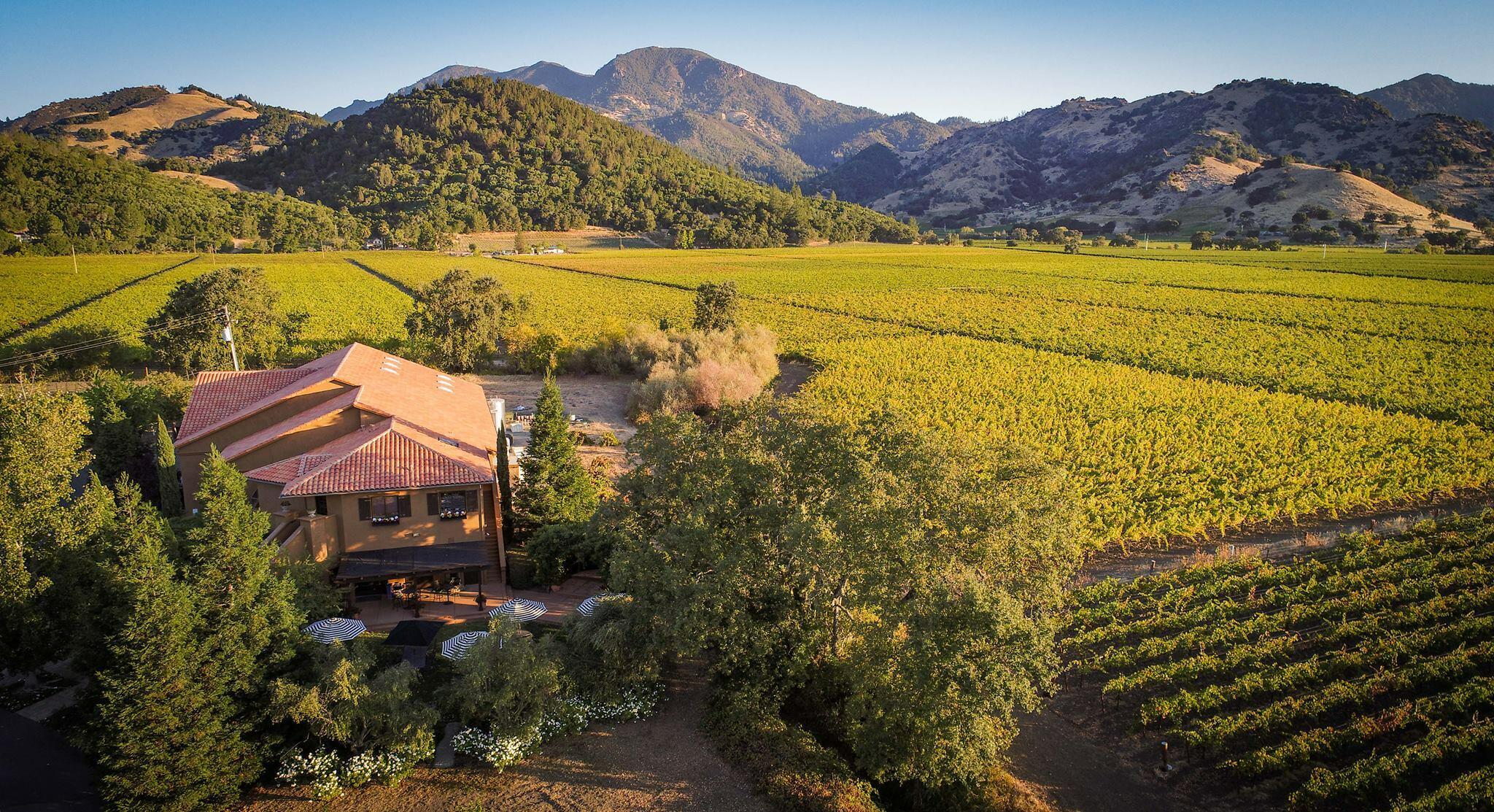 Bennett Lane Winery Cover Image