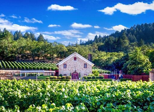 Morlet Family Vineyards Image