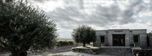 Pulenta Estate Image
