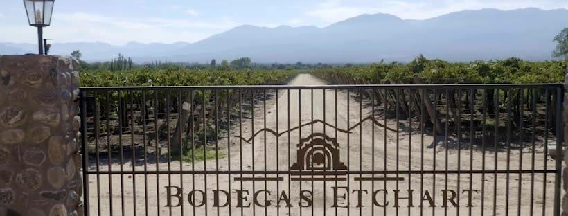 Bodegas Etchart Cover Image