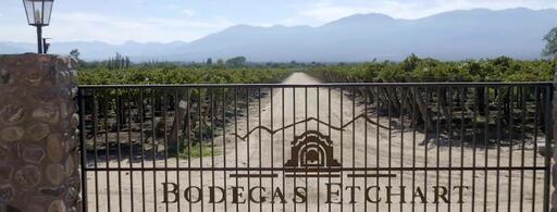 Bodegas Etchart Image