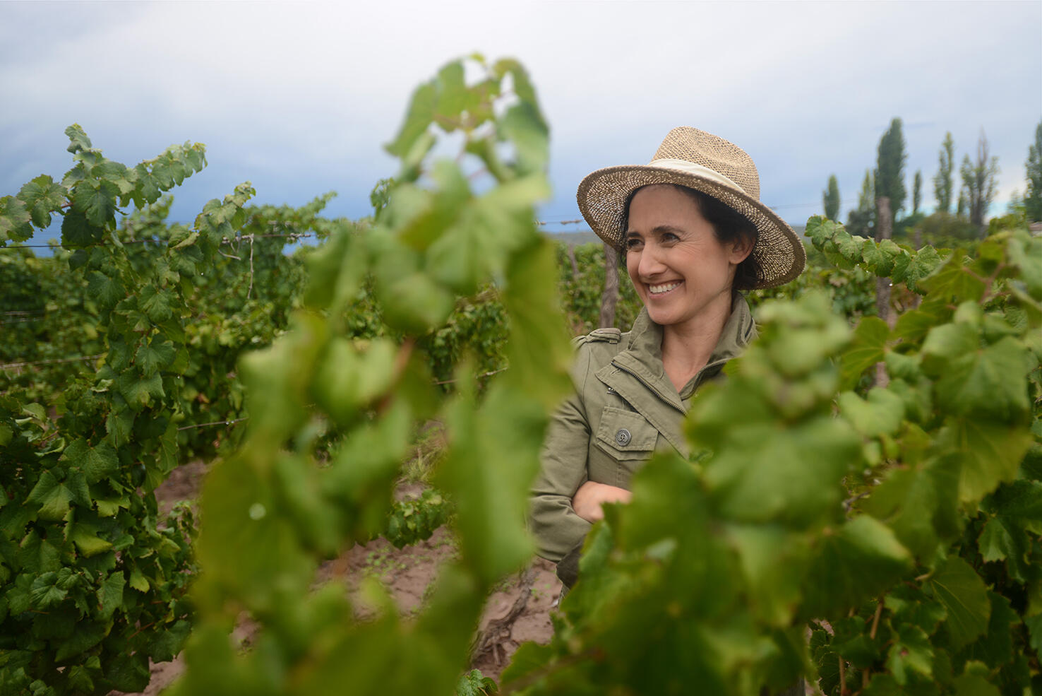 Luca Wines Cover Image