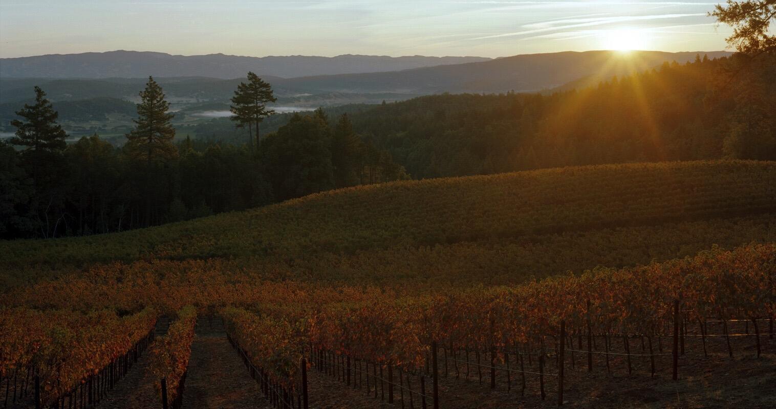 Pestoni Family Estate Winery Cover Image