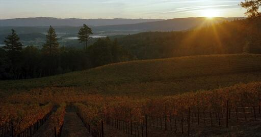 Pestoni Family Estate Winery Image